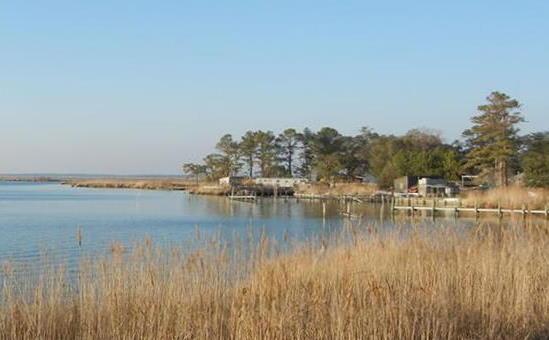 coastal area with buildings