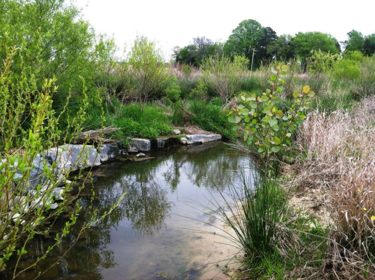 mitigation of stream