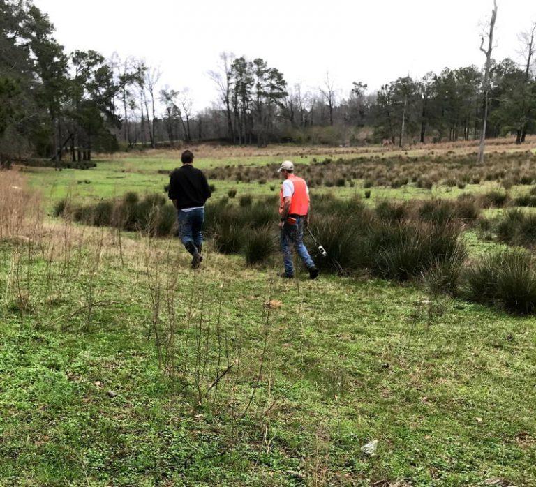 soils engineer evaluating wetland