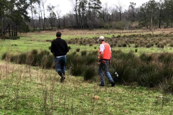 evaluating wetland soil