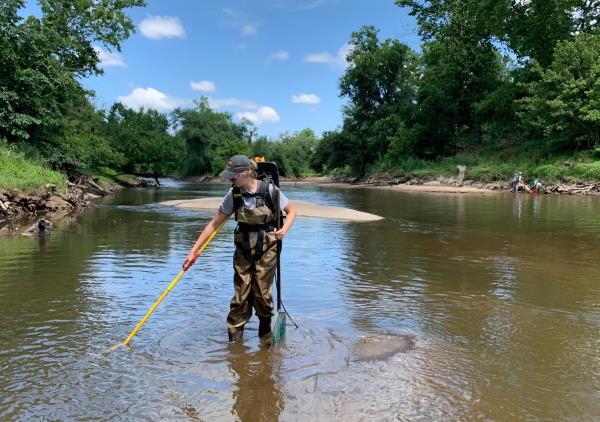 biologist conducting electrofishing fish survey