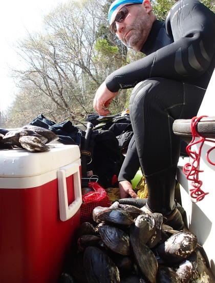 Rappahannock River mussel survey