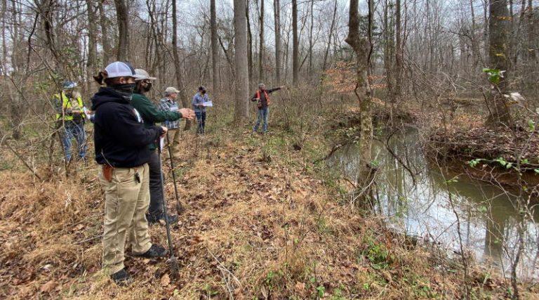 Three Oaks wetlands team looking at stream